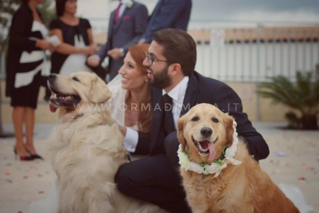 Wedding Dog Sitter - Federica e Angelo