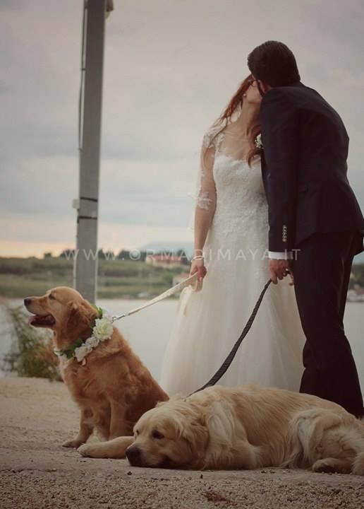Wedding Dog Sitter - Federica e Angelo