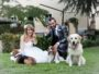 Wedding Pet Sitter - Orma Di Maya