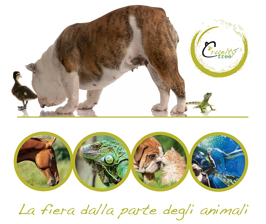 A Tutta Coda - dog sitter e wedding dog sitter ORMA DI MAYA
