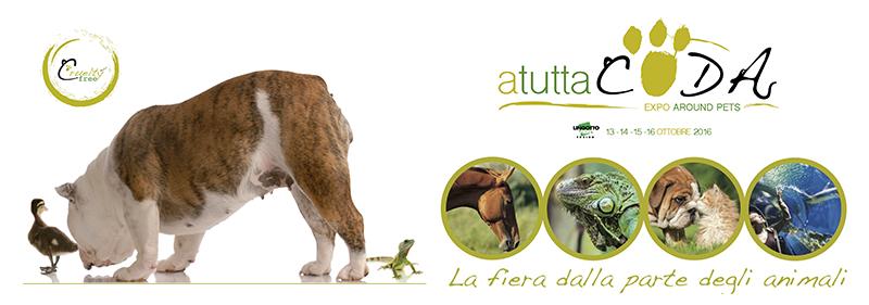 A Tutta Coda - Expo - Torino