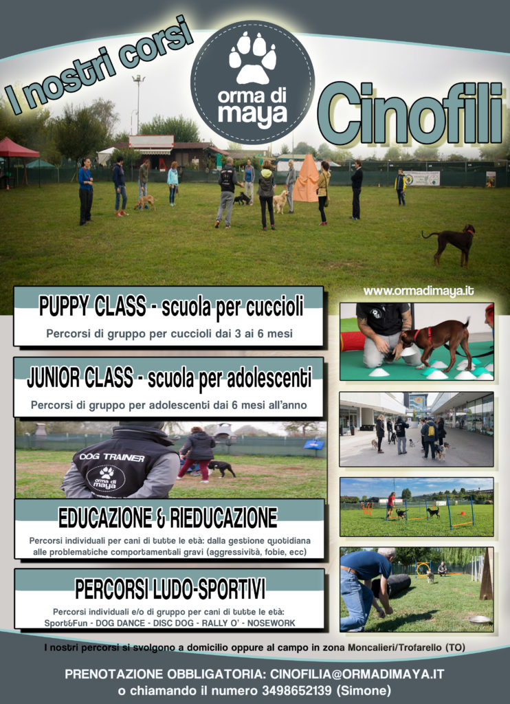 Puppy Class - Junior Class - Educazione - Disc Dog - Rally O' - Dog Dance