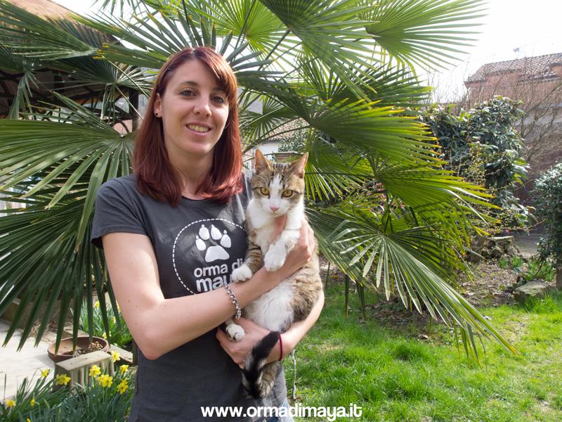 Cat Sitter - Orma Di Maya